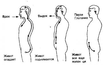 Даосские практики для мужчин - фото 3
