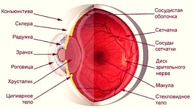 Даосские практики улучшения зрения - фото 2